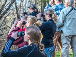 Master Naturalists looking through binoculars during bird hike