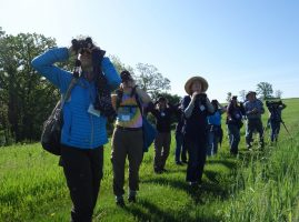 Master Naturalists participate in a bird hike with binoculars and spotting scopes